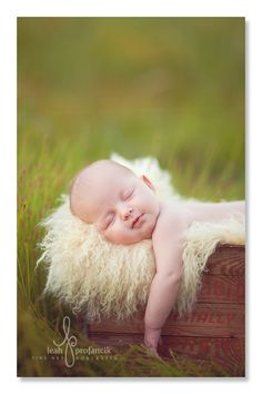 amazeballs outdoors baby shoot by leah profancik on inspire me baby #photogpinspiration