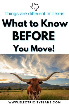 """Moving to Texas? Here are things to know when you move to the Lone Star State. Plus we cover the two things that are different in Texas than anywhere else. Moving to Dallas? Houston? Fort Worth? That's (1) how to shop for electricity in Texas, and (2) how to figure out the Texas driver's license and registration process. Plus """"Moving to Texas"""" Let's get started! Moving Costs, Moving Tips, Moving Hacks, Moving Memes, Best Places To Move, Moving Across Country, Moving To Texas, Texas Travel, Stars At Night"""