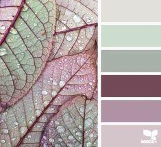 Paleta de colores #fachadasverdes