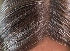 Do you have white hair? It is a great thing to have full crop of hair but if you have grey hair then it is quite embarrassing. White hair which is also known as Natural Hair Care, Natural Hair Styles, Long Hair Styles, Remedy For White Hair, Natural Hair Treatments, Natural Cures, Hair Remedies, Herbal Remedies, Living At Home