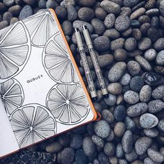 beautiful line drawing, orange slices journal art illustration Bullet Journal Inspo, Bullet Journal Ideas Pages, Bullet Journal Spread, Journal Pages, Bullet Journal August, Journals, Bullet Journal Lined Paper, Bullet Journal Months, Journal Layout