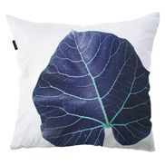Scatter cushions | Indoor | clintonfriedman | collections