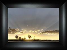 Illumination By Todd Thunstedt 18x24 Tree Sunshine Prover... https://www.amazon.com/dp/B0763CNSZZ/ref=cm_sw_r_pi_dp_x_yFL3zbMDXX9CH