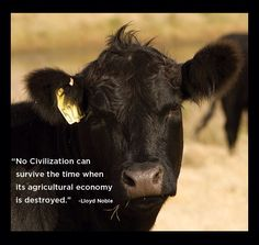 Saying for agriculture