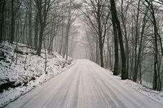 """[IMAGES] Anna Dosenes, 23 ans, nous présente une série sentimentale, où il est question de souvenirs d'un hiver qui n'existe plus. Découvrez ses belles images sur le site de #Fisheyelemag ! [Photo: © Anna Dosenes / Extrait de """"Winter memories""""] #photo #photography #photographie #road #route #snow #neige #winter #hiver #landscape #nature #beauty"""