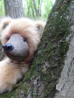 bear Dexter by By Anna Rudenko | Bear Pile