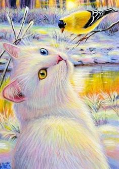Drawing On Creativity ACEO original white cat goldfinch bird winter sunlight landscape painting art Animals And Pets, Cute Animals, Gif Animé, White Cats, Cat Drawing, Beautiful Cats, Cat Art, Landscape Paintings, Cats And Kittens