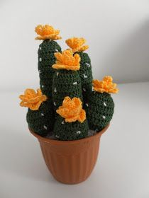 How to crochet a succulent plant with yellow flowers Knitted Flowers, Crochet Flower Patterns, Crochet Home, Diy Crochet, Cacti And Succulents, Planting Succulents, Cactus E Suculentas, Cactus Images, Cactus Craft