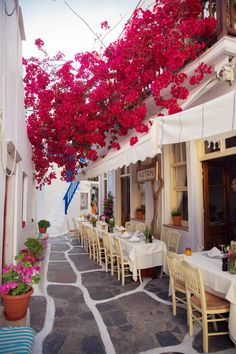 Beautiful morning on Greece Islad,Mykonos🌺🇬🇷 Mykonos Grecia, Mykonos Town, Santorini Greece, Greece Itinerary, Greece Travel, Oh The Places You'll Go, Places To Travel, Santorini House, Outdoor Restaurant
