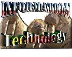 SAI - IELTS Essays With Answers - Essays and Tips on writing: The age of Information Technology has taken a lot ...