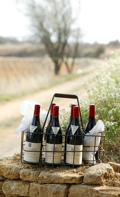 Photothèque Chateaux Rayas Fonsalette des Tours Chateauneuf Du Pape, Wine Rack, Red And White, Champagne, Tours, Memories, Cheese, Drinks, Bottle