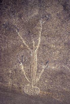 Upside Down Man/Aboriginal art from Upside Down Man Cave, Popran NP, Australia.
