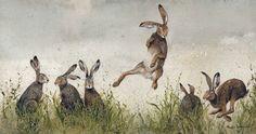 """Hijinx""- Hares illustration by Maggie Vandewalle. Jack Rabbit, Rabbit Art, Year Of The Rabbit, Watership Down, Art Aquarelle, Yorky, Bunny Art, Canvas Prints, Art Prints"