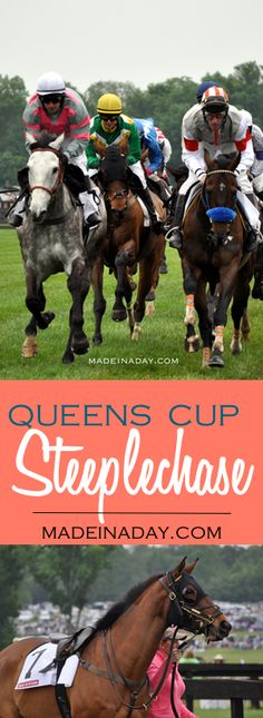 Queens Cup Steeplech