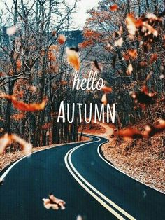 Fall Wallpaper Autumn Diys Cozy Happy Hello