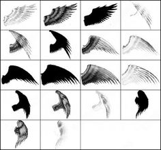 angel wing brush