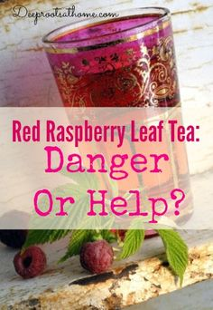 Red Raspberry Leaf Tea ~ Danger Or Help? | Deep Roots at Home
