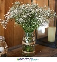 Babys Breath. Cute for cocktail tables.