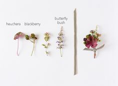"""What to wear instead of a """"pink flower""""... a nice boutonniere with heuchera, blackberry, and butterfly bush. DIY-friendly, too."""