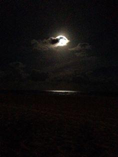 Moon lit paradise