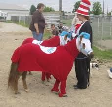 horse dress up ideas - Google Search