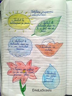 Ema la scoala Interactive Learning, Bullet Journal, School, Kids, Rome, Reading, Young Children, Boys
