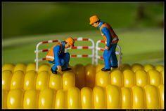 Fixing the Yellow Brick Road Miniature Photography, Figure Photography, Toys Photography, People Photography, Macro Photography, Creative Photography, Macro Fotografie, Photo Macro, Miniature Calendar