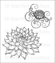 Heartfelt Creations | Blooming Dahlia PreCut Set $15.99