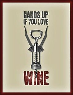 Red wine meme - hands up if you love wine. Just Wine, Wine And Beer, Wein Poster, Cheers, Wine Meme, Funny Wine, Wine Signs, Wine Down, Types Of Wine