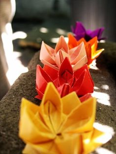 Origami Lotus Flowers.