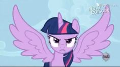 My little pony friendship is magic.                Princess twilight sparkle.