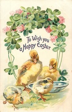 Postcard To Wish You a Happy Easter Ducklings Chicks Clovers Tuck Posted 1909 Easter Greeting Cards, Vintage Greeting Cards, Vintage Postcards, Holiday Postcards, Easter Art, Easter Crafts, Easter Parade, Vintage Easter, Illustrations
