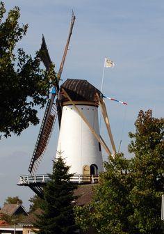 Korenmolen Windlust is een in 1853 aan de Smidsweg in Westmaas gebouwde korenmolen die tot 1952 in bedrijf was. De familie Leeuwenburg, die een dierenspeciaalzaak onderaan de molen heeft, verkocht de molen in 1961 aan de gemeente Westmaas.De molen is in 2009/2010 volledig gerestaureerd en regelmatig geopend voor bezoekers.