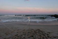 By Teresa Escobar Neon Artwork, Rose Art, Installation Art, Beach, Water, Artist, Outdoor, Pink Art, Gripe Water