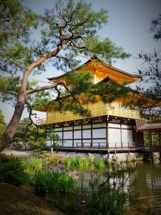 The Golden Pavilion, Kyoto, Japan