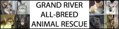 Grand River All Breed Rescue Canadian Animals, Cambridge Ontario, Website Link, Animal Rescue Shelters, Canada, River, Rivers