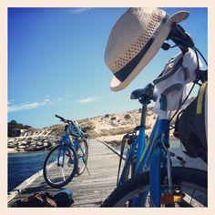 Rent a bike a cycle around Rottnest Island Perth Western Australia
