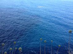 Innumerevoli ondulazioni di blu. Il mare.