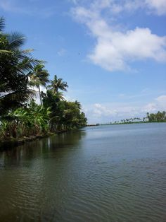 Backwater kerala | Visit kerala in your budget | Key word : Hot Tour india, Trip india, holiday package india, tourism india, tourist place india, know about indian culture - http://india.mycityportal.net