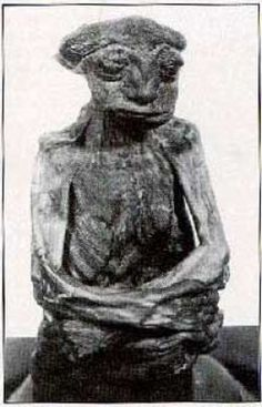 """Could this little mummy have been proof of the """"little people"""" so greatly believed in by the Native Americans?""""little mummy"""" that was discovered back in the 1930s in the San Pedro Mountains."""