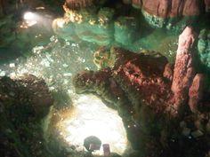 Eastcoast cave