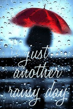 Mimi Gif: just another rainy day. Cute Good Morning Images, Beautiful Morning Quotes, Good Morning Picture, Good Morning Flowers, Good Morning Good Night, Good Morning Wishes, Good Morning Rainy Day, Cozy Rainy Day, Raining Day Quotes