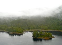 When your ship docks in Ketchikan, Alaska, skip the jewelry shopping and take a seaplane tour of Misty Fjords instead.