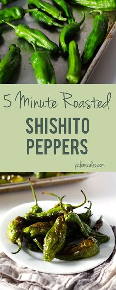 5 Minute Roasted Shishito Peppers | PaleoScaleo.com