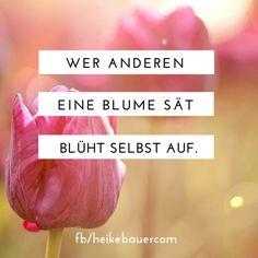 Wer anderen eine Blume sät, blüht selbst auf. #frühling #seiderwelteinlicht #zitat