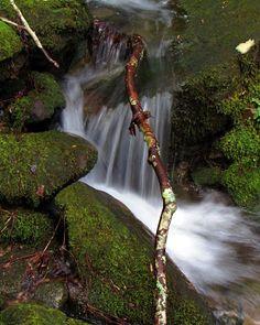 "Sam Calhoun on Instagram: ""One of a million little cascades in Bankhead National Forest, AL.  #explore #getoutstayout  #optoutside #getoutide #travelblogger #travel…"""