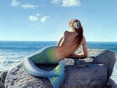 Mermaid  with blue tail sitting on a rock