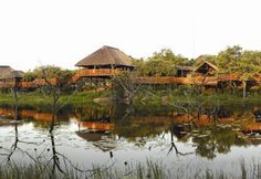 Nyati Wilderness, near Vaalwater, which comprises of 6 000 hectares of idyllic terrain set in the heart of the Waterberg mountains in South Africa's Team Building, Wilderness, South Africa, Wedding Venues, Safari Wedding, Cabin, Honeymoons, Mountains, Luxury
