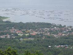 Boats taking people out to Taal Volcano
