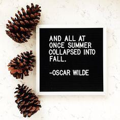 Oscar Wilde fall quote, letter board.